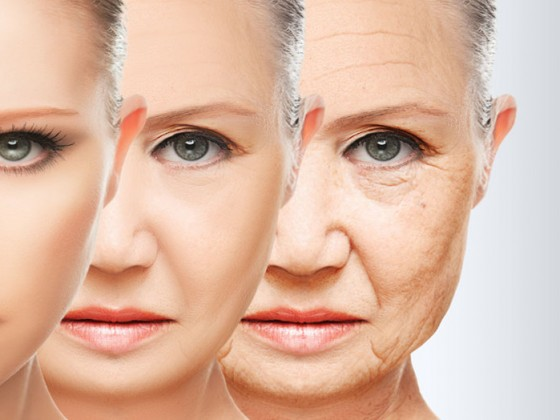 吃燕窝能延缓衰老吗