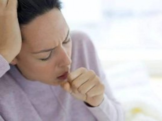 燕窝炖百合可以止咳吗