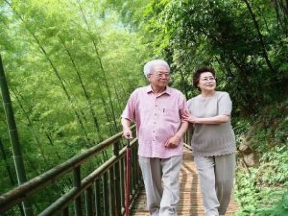吃燕窝对老年人的好处