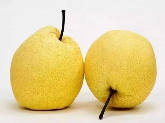 怀孕初期湿热吃什么水果好