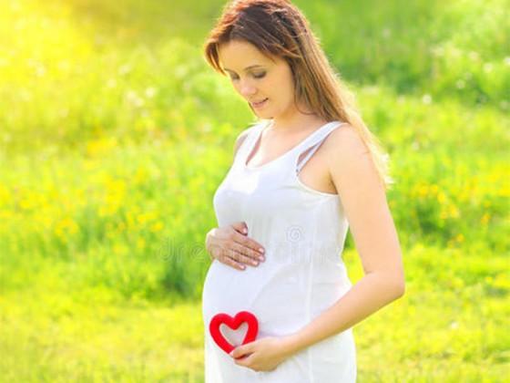 孕妇可以吃紫菜炖燕窝吗