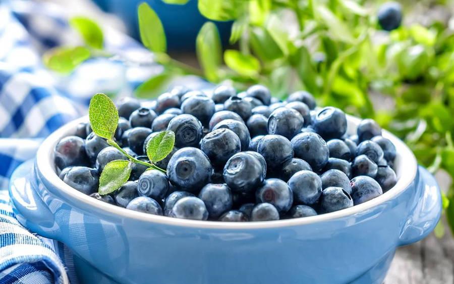 怀孕期间孕妇能不能吃蓝莓