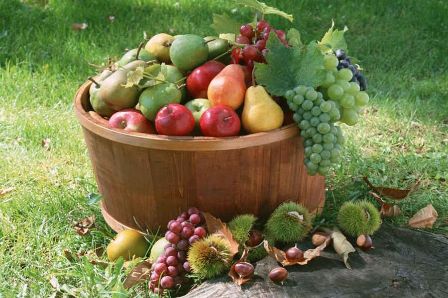 怀孕孕酮低吃什么水果