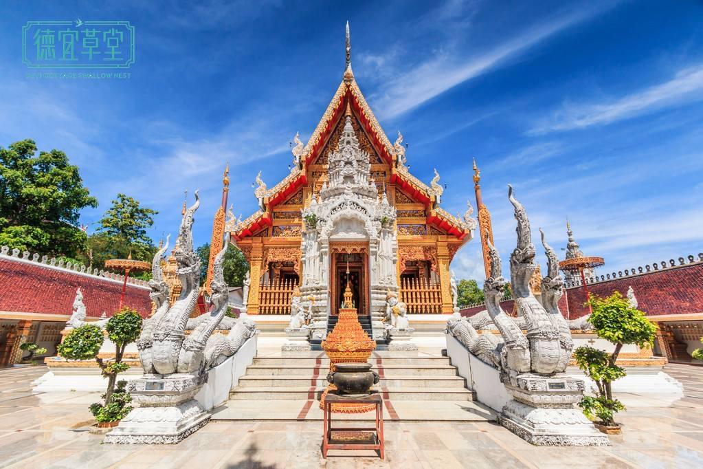 泰国燕窝为什么受欢迎