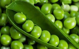 燕窝炖豌豆的做法